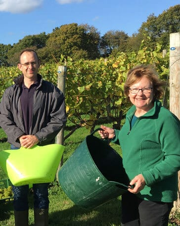 English wine producer in Sussex